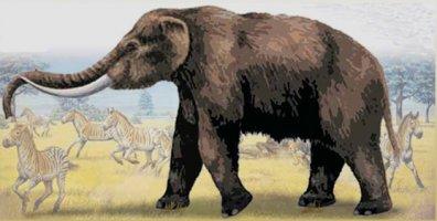 primer sitio de cacería de mastodontes